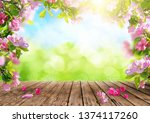 spring flowers background  pink ... | Shutterstock . vector #1374117260
