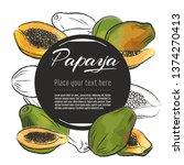 vector sketch papaya banner on... | Shutterstock .eps vector #1374270413