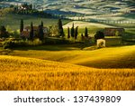 landscape in tuscany | Shutterstock . vector #137439809