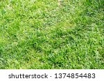 urban photography  a lawn is an ... | Shutterstock . vector #1374854483