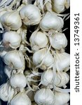 garlic | Shutterstock . vector #13749361