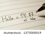 Beginner Chinese language learner writing Hello word Nihao in Chinese characters and pinyin on a notebook macro shot