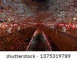 beautiful pink sakura cherry...   Shutterstock . vector #1375319789