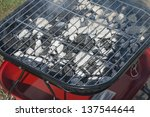 portable bbq with burning