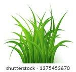 green grass  isolated on white... | Shutterstock .eps vector #1375453670