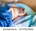 cute pug dog sleep rest in the...