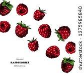 vector frame with raspberries.... | Shutterstock .eps vector #1375985840