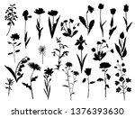 collection of vector... | Shutterstock .eps vector #1376393630