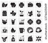phytoterapy icons set on... | Shutterstock .eps vector #1376635049