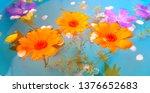 beautiful flowers immersed in... | Shutterstock . vector #1376652683