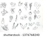 hand drawn set of vegetables... | Shutterstock . vector #1376768240