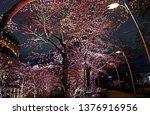 beautiful pink sakura cherry... | Shutterstock . vector #1376916956