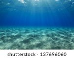 Egypt  Red Sea Shallow Water...