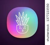 zebra cactus app icon. cactus...