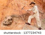 Archaeologist Works On An...