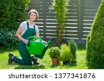 gardener or florist at work....   Shutterstock . vector #1377341876