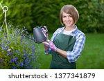 gardener or florist at work....   Shutterstock . vector #1377341879