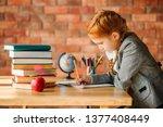 cute schoolgirl doing homework... | Shutterstock . vector #1377408449