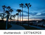 silhouette palm trees on the... | Shutterstock . vector #1377642923
