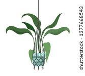 houseplant on macrame hangers... | Shutterstock .eps vector #1377668543