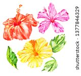 set of watercolor hibiscus and... | Shutterstock . vector #1377846329