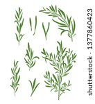 illustration of rosemary... | Shutterstock .eps vector #1377860423