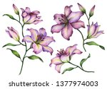Set Of Lilies  Hand Painted...