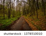 a wet road in the forest in... | Shutterstock . vector #1378510010