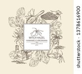 background with witch hazel... | Shutterstock .eps vector #1378616900