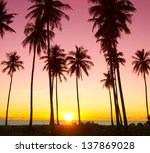 idyllic wallpaper palm paradise | Shutterstock . vector #137869028