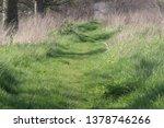 grass footpath  running along... | Shutterstock . vector #1378746266