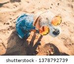 chihuahua wearing sunglasses...   Shutterstock . vector #1378792739