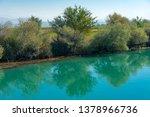 old broken tree branches fell... | Shutterstock . vector #1378966736