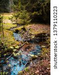 Small photo of little watercourse in a forest