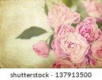Pink Roses On Vintage Background