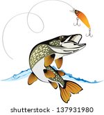 pike and fishing lure with... | Shutterstock .eps vector #137931980