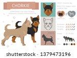 designer  crossbreed  hybrid... | Shutterstock .eps vector #1379473196