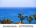 tenerife island  spain   july... | Shutterstock . vector #1379539556