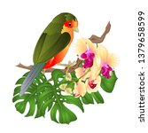 small tropical bird with... | Shutterstock .eps vector #1379658599