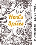 spices and herbs vector hand...   Shutterstock .eps vector #1379679860
