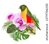 small tropical bird with... | Shutterstock .eps vector #1379706230