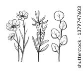 set of hand sketched herbs and... | Shutterstock .eps vector #1379747603