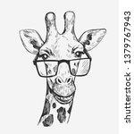 giraffe sketch. hand drawn...   Shutterstock .eps vector #1379767943