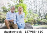happy old couple smiling in a... | Shutterstock . vector #1379884610
