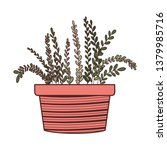 houseplant with potted isolated ... | Shutterstock .eps vector #1379985716