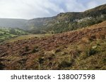 Постер, плакат: Bracken hillside raised bog