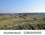 Dune Landscap With Hidden...