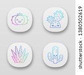 cactuses app icons set. plants...