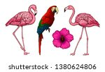 tropical birds and exotic... | Shutterstock .eps vector #1380624806