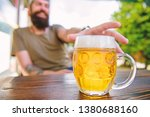 drinking alcohol including beer.... | Shutterstock . vector #1380688160